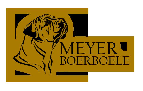 Meyer Boerboele